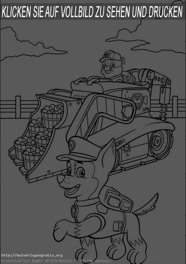 malvorlagen  gratis paw patrol -18